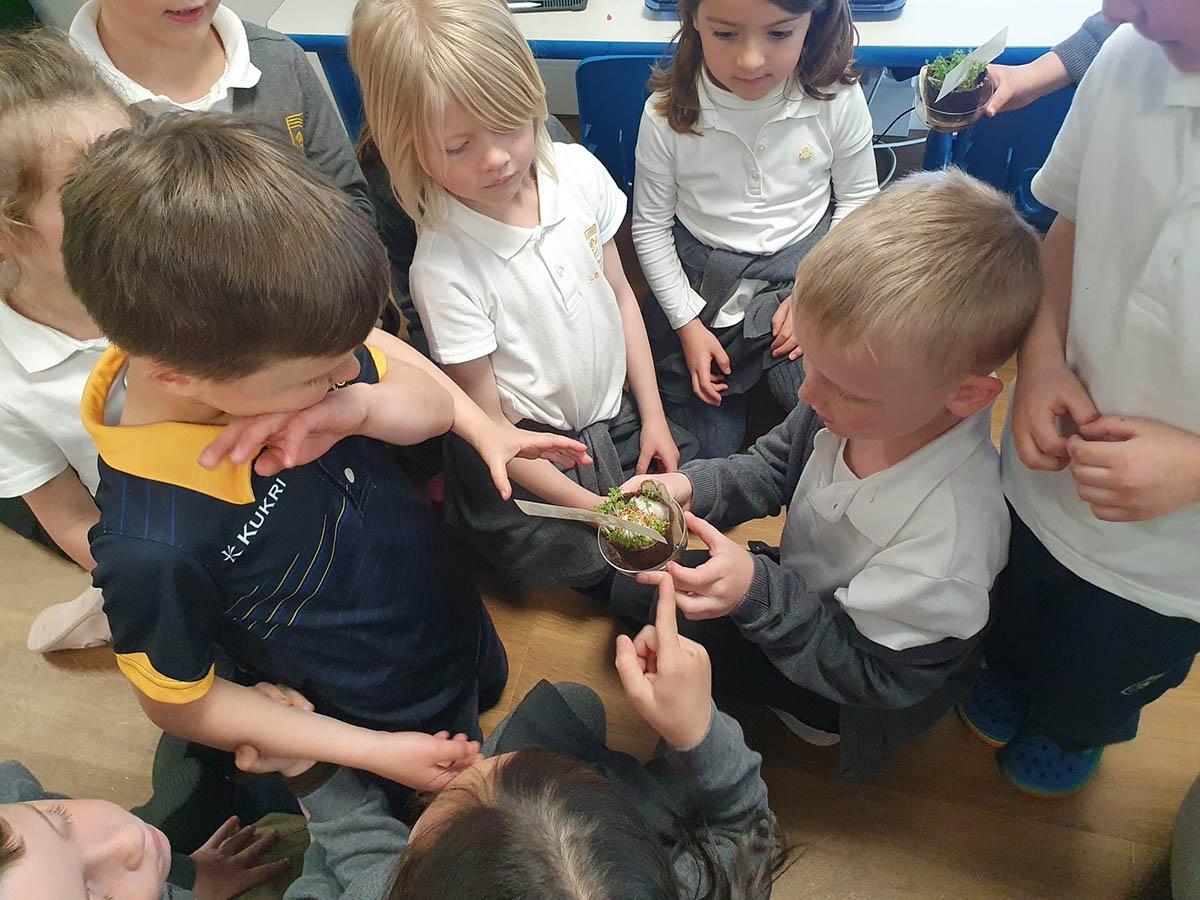 Spring at the Bilingual Infant School Le Régent